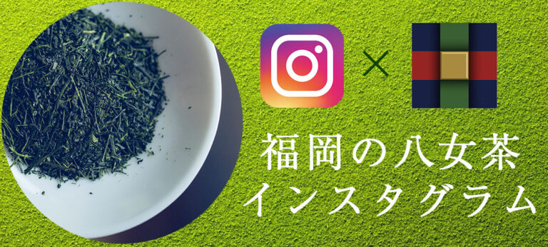 instagram インスタグラム 八女茶 とは 高級茶 日本一 玉露 伝統本玉露 福岡の八女茶 日本茶 八女 緑茶 お茶種類 歴史 特徴 yame tea green gyokuro