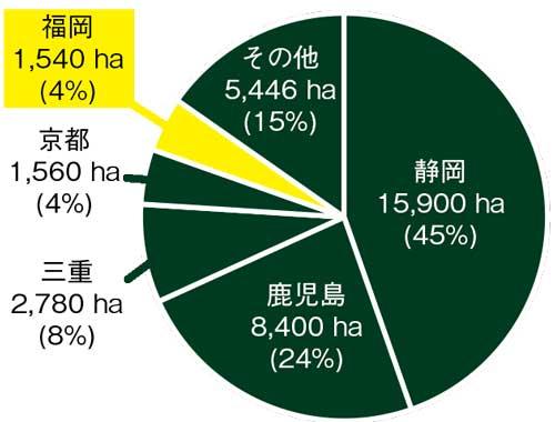 量 生産地 栽培面積 八女茶